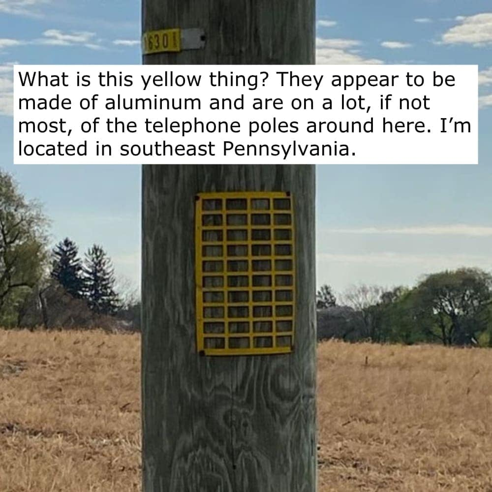 A special gift from Pennsylvania